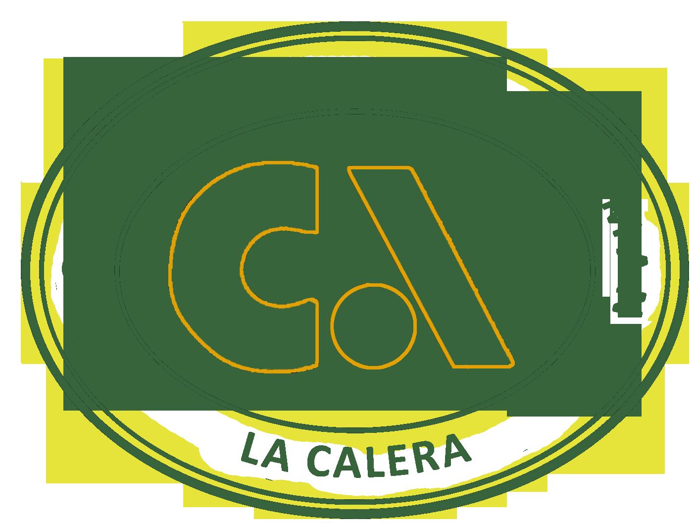 LOGO CORPORACIÓN EDUCACIONAL APUMANQUE 2019